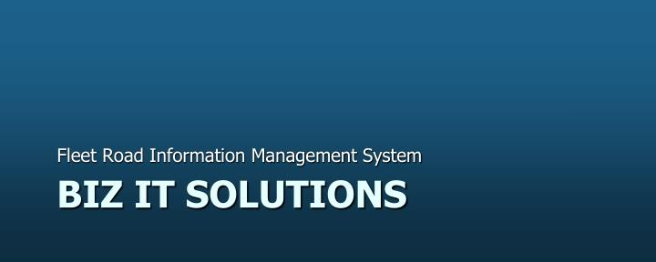 biz it solutions