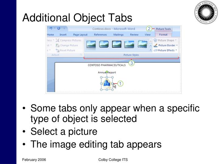 Additional Object Tabs