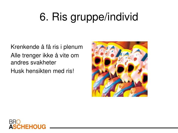 6. Ris gruppe/individ
