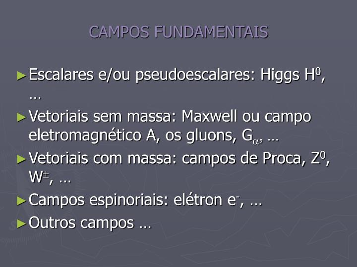 CAMPOS FUNDAMENTAIS