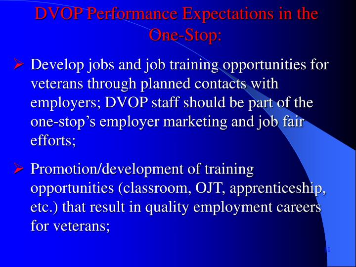DVOP Performance Expectations in the