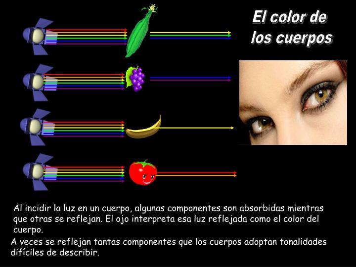 El color de