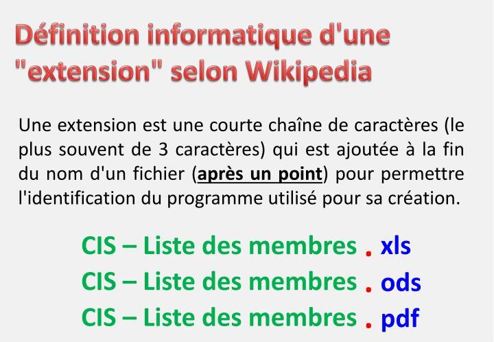 """Définition informatique d'une """"extension"""" selon"""