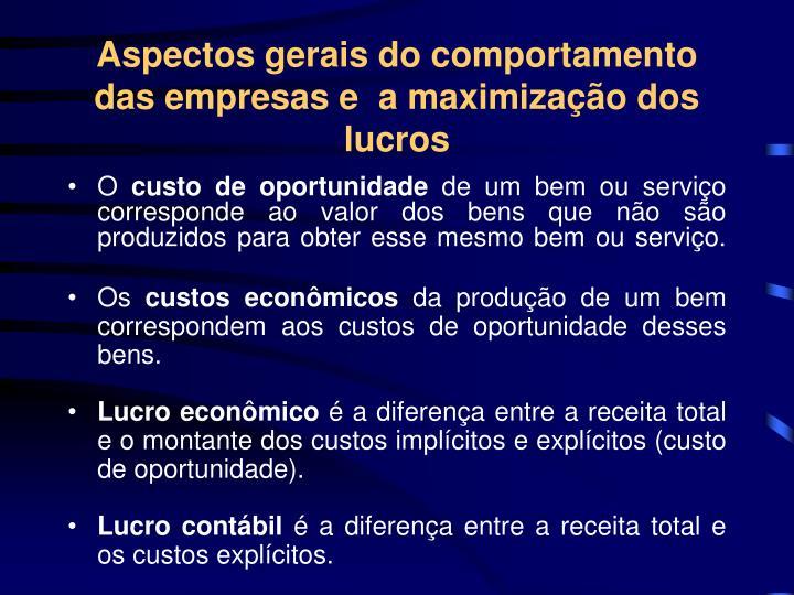 Aspectos gerais do comportamento das empresas e  a maximização dos lucros