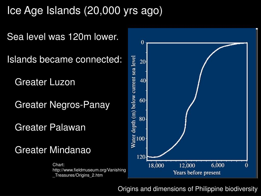 PPT - Hottest of the hotspots: Philippine biodiversity in