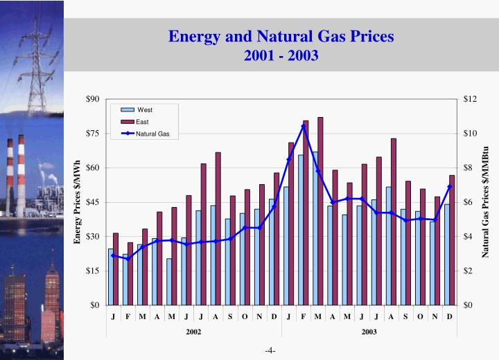 Energy and Natural Gas Prices