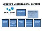 estrutura organizacional por nits3