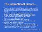 the international picture