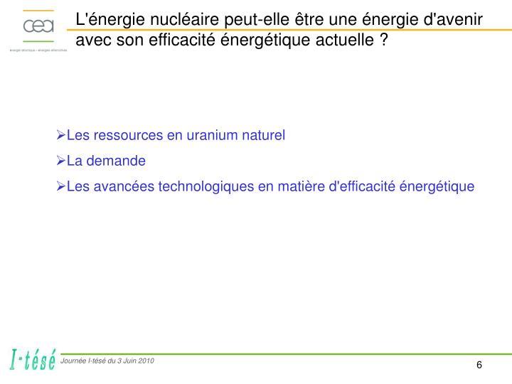 L'énergie nucléaire peut-elle être une énergie d'avenir avec son efficacité énergétique actuelle ?