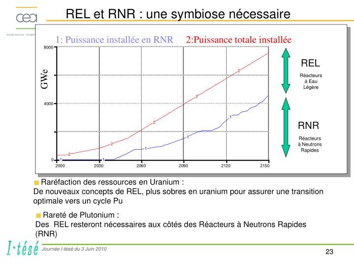 REL et RNR : une symbiose nécessaire