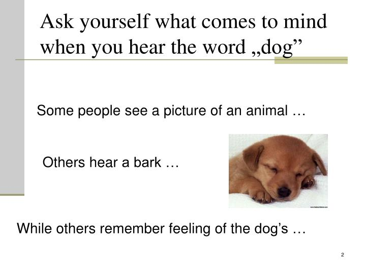 Ask yourself what comes to mind when you hear the word dog