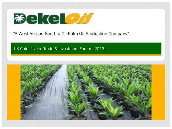 a west african seed to oil palm oil production company