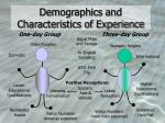 demographics and characteristics of experience
