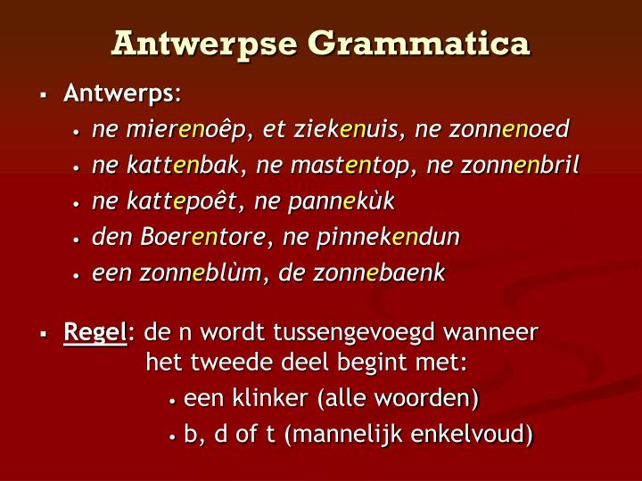 Antwerpse Grammatica