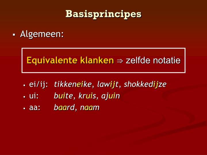 Basisprincipes