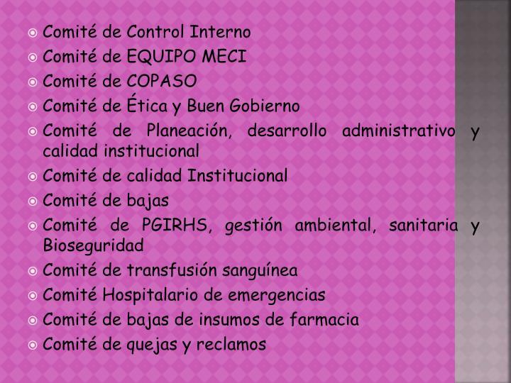 Comité de Control Interno