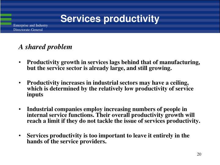 Services productivity