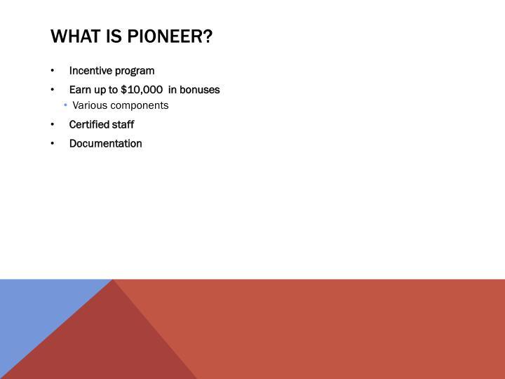 What is pioneer
