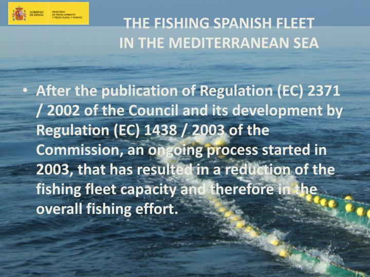 After the publication of Regulation (EC) 2371 / 2002 of the Council and its development by Regulation (EC) 1438 / 2003 of the Commission, an ongoing process started in 2003, that has resulted in a reduction of the fishing fleet capacity and therefore in the overall fishing effort.