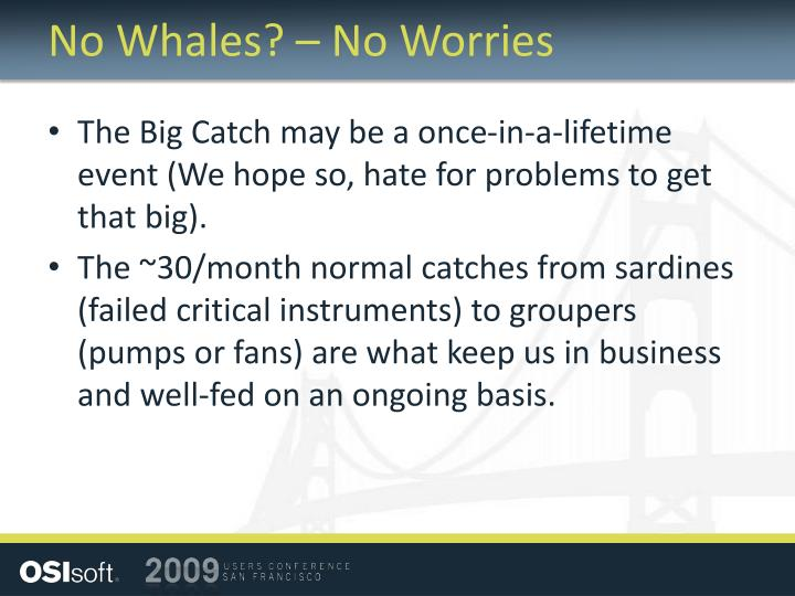No Whales? – No Worries