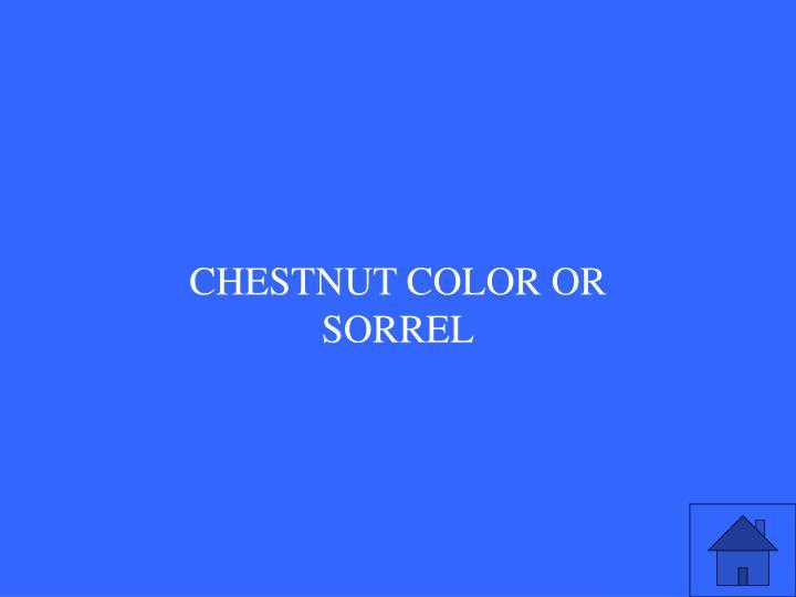 Chestnut color OR SORREL
