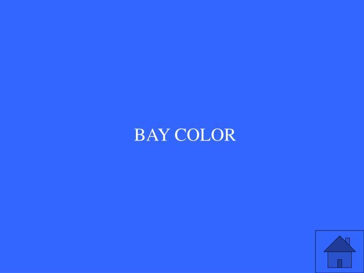 BAY COLOR