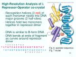 high resolution analysis of l repressor operator co crystal