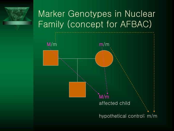 Marker Genotypes in Nuclear Family (concept for AFBAC)