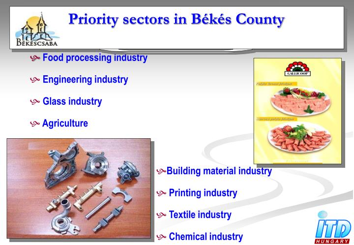 Priority sectors in Békés County