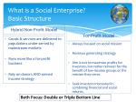 what is a social enterprise basic structure