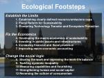 ecological footsteps1