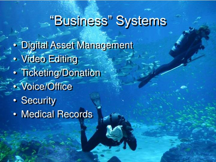 """""""Business"""" Systems"""