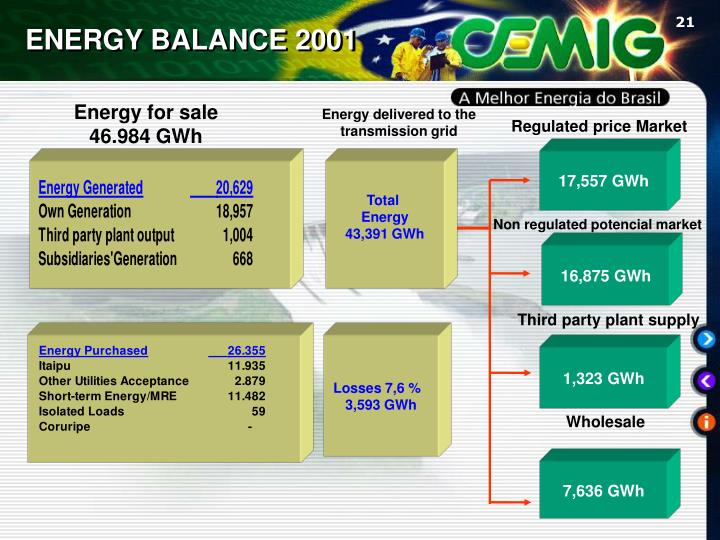 ENERGY BALANCE 2001