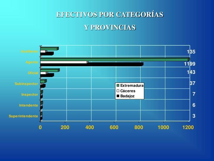 EFECTIVOS POR CATEGORÍAS