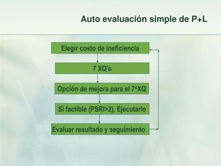 Auto evaluación simple de P+L