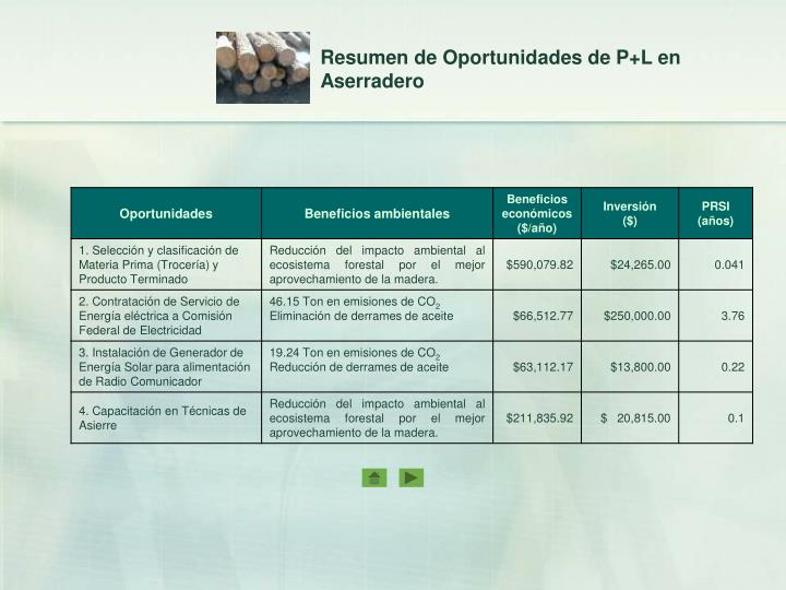 Resumen de Oportunidades de P+L