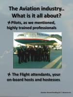 the aviation industry what is it all about1