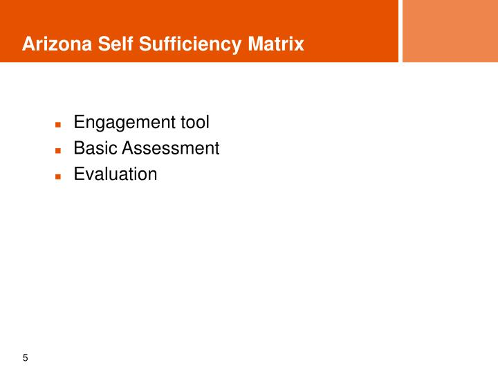 Arizona Self Sufficiency Matrix