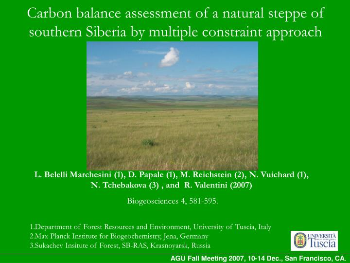 carbon balance assessment of a natural steppe of southern siberia by multiple constraint approach n.