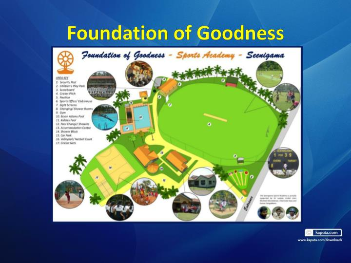 Foundation of Goodness