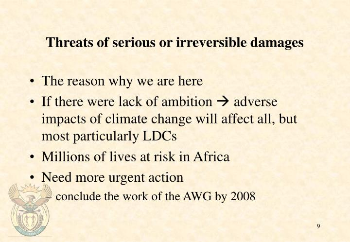 Threats of serious or irreversible damages