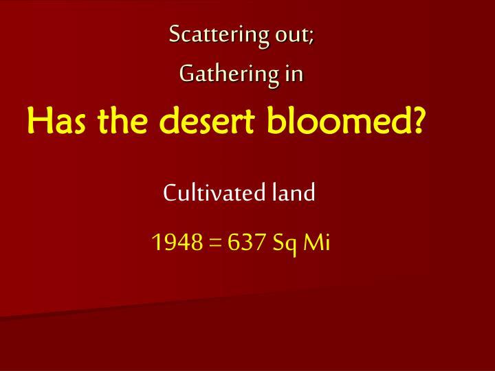 Has the desert bloomed?