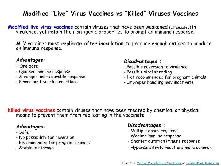 "Modified ""Live"" Virus Vaccines vs ""Killed"" Viruses Vaccines"