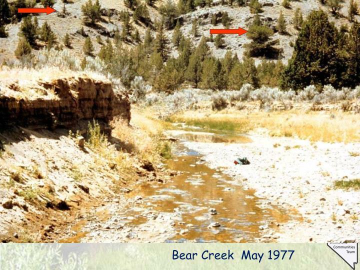 Bear Creek  May 1977