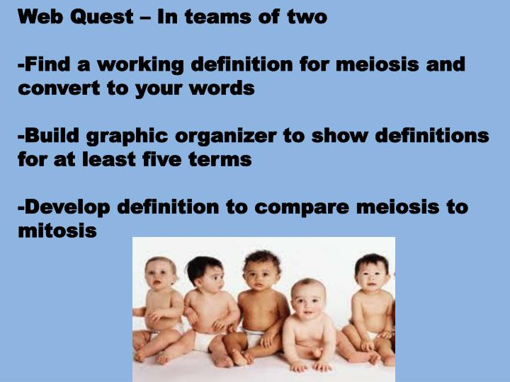 Web Quest – In teams of two