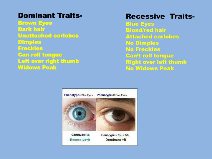 Dominant Traits-