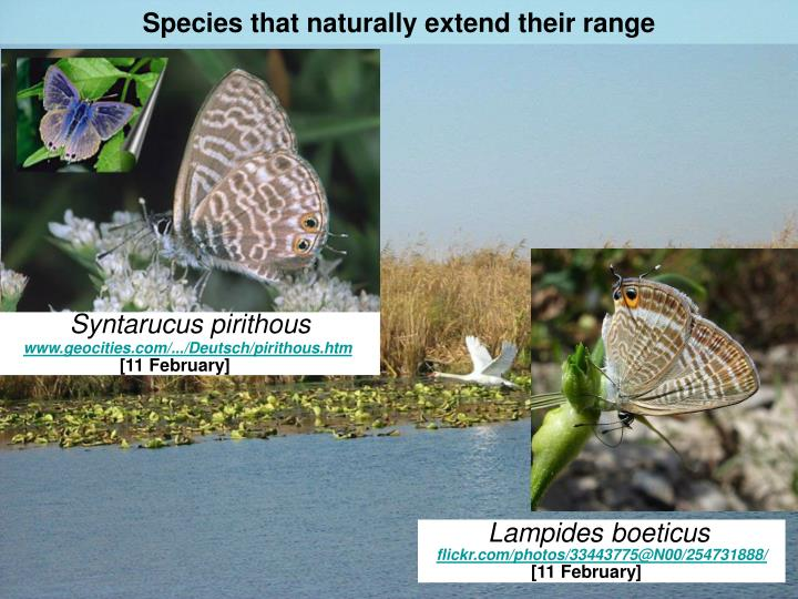 Species that naturally