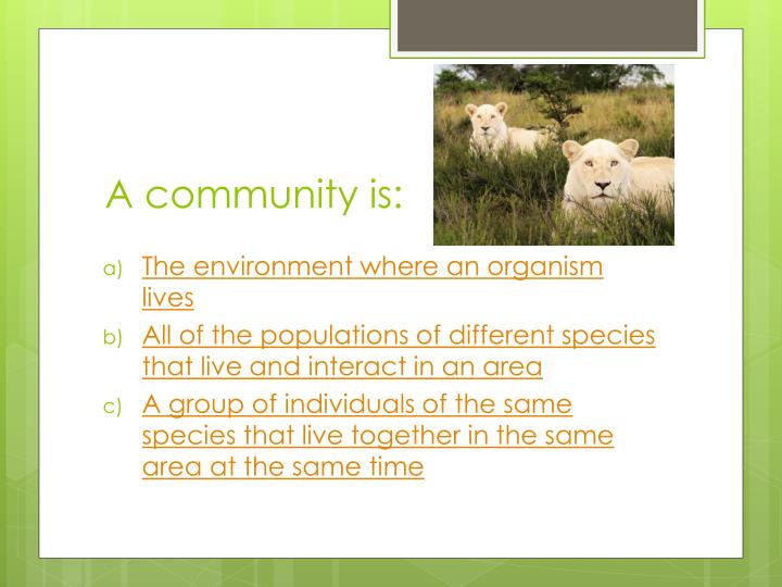 A community is: