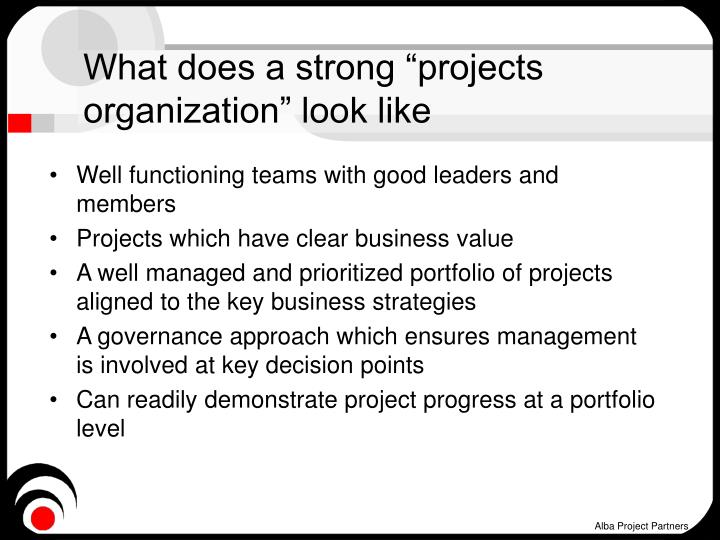 "What does a strong ""projects organization"" look like"