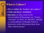 what is culture2
